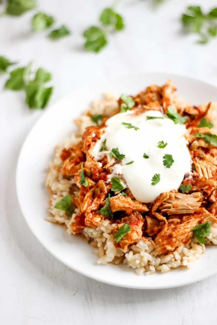 My family LOVED this easy shredded slow-cooker salsa chicken! // www.healthy-liv.com